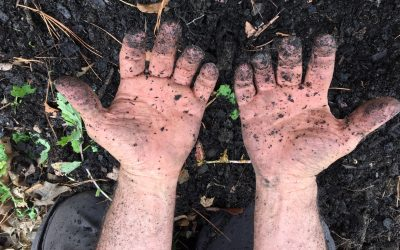 Growing From The Dirt In My Hands